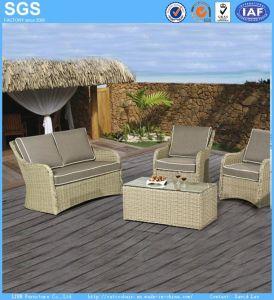 Garden Furniture Natural Color PE Rattan Sofa pictures & photos