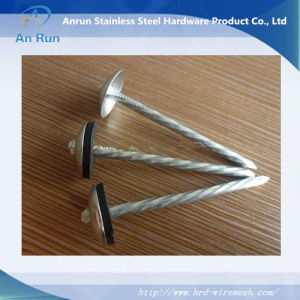 Roofing Nail with Washer 90mmx4mm pictures & photos