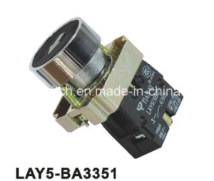 Flush Spring Return Marked Push Button Switch pictures & photos