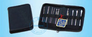 Veterinary Acupuncture Bag (VSR-61) pictures & photos
