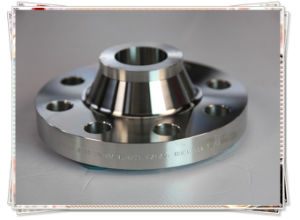 DIN Stainless Steel Wnrf Dn25 Pn16 Flange