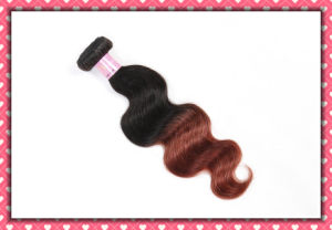 Virgin Peruvian Human Hair Body Wave Ombre Color 24inches pictures & photos