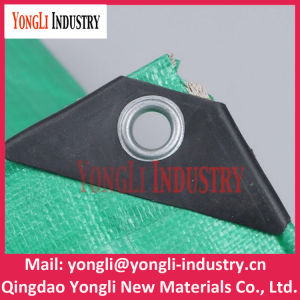 Waterproofing PE Tarpaulin, Covering Plastic Canvas Poly Tarp pictures & photos