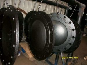 Blind Flange pictures & photos