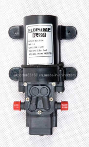 Electrical Pump for Sprayer pictures & photos