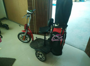 2016 Newest Golf Buggy with 800W Motor (et-es002) pictures & photos