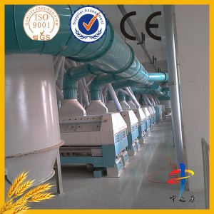 Best 10tpd Wheat Flour Mill Machinery pictures & photos