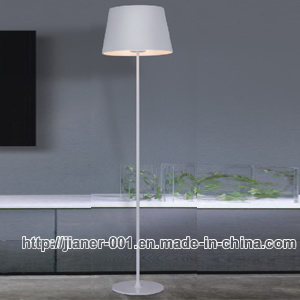 Simple Fashion Home Modern Floor Lamp Lighting (F-5867) pictures & photos