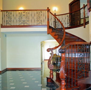 Wrought Iron Staircase, Iron Handrail/ Railing pictures & photos