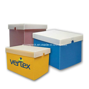 Corrugated Plastic Storage Box pictures & photos
