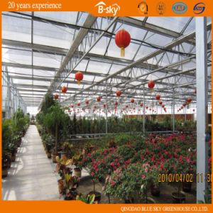 Glass Greenhouse with Beautiful Look pictures & photos