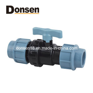 2014 Single Union Ball Valve Pn16 (Straight instsert) PP Fitting pictures & photos