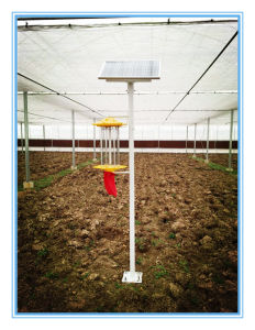 Solar Farm/Garden Insect/Pest Killer Lamp, Healthy, Green, Pollution-Free pictures & photos