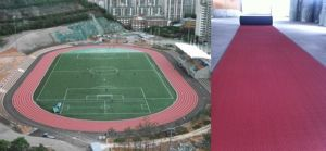 Iaaf Certified Prefabricated Rubber Running Track