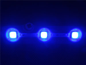 Good Prices 5050 Injection LED Module for Advertising Sign pictures & photos