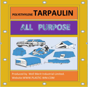 All Purpose 80GSM-90GSM Plastic Tarpaulin pictures & photos