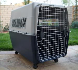 China Biggest Dog House, Pet Cage pictures & photos
