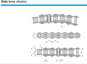 Side Bow Chain C2050sb / 08bsbf1 pictures & photos