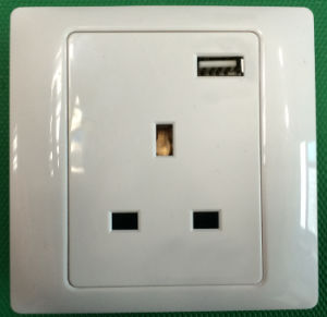 13A Bs Outlet USB Charger 1A, 5V pictures & photos