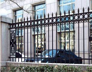 Ornamental Picket Wrought Iron Fence pictures & photos