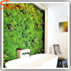 Customized Artificial Fake Plastic Synthetic Plant Green Grass Wall pictures & photos