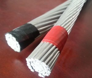 All Aluminum Conductor for B-230 & B-231 pictures & photos