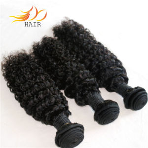Wholesale 100% Cambodian Virgin Human Hair Curly Natural Hair pictures & photos