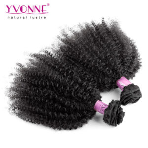 Natural Color Brazilian Afro Kinky Curly Human Hair pictures & photos
