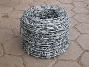 Barbed Wire /Razor Barbed Wire (HPZS-1001) pictures & photos
