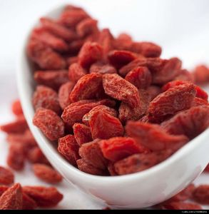 Dried Medlar From Ningxia pictures & photos