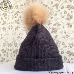 Pompon Hat / Beanie Hat / Winter Hat (BH-02) pictures & photos