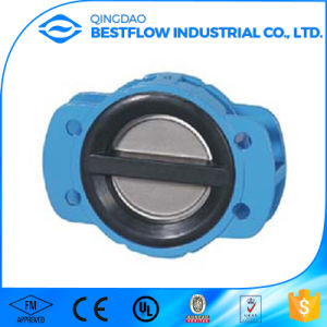 Cast Iron Ball Check Valve pictures & photos