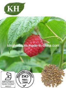 Raspberry Extract Raspberry Ketone CAS: 5471-51-2 pictures & photos