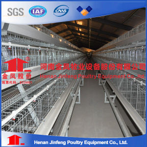 4 Tiers Egg Layer Chicken Farm Cage with Nice Price pictures & photos