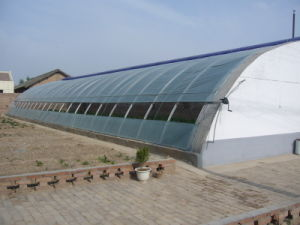 Greenhouse Pipes/Steel Plpes/Galvanized Pipes pictures & photos