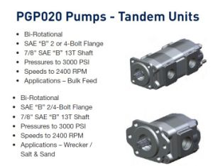 Parker/Commercial/Permco Gear Pump P30/31 pictures & photos