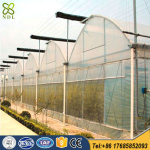 Good Quality Tempered PVC/PE Film Greenhouse for Tomato Planting pictures & photos