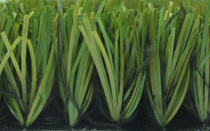 Artificial Grass for Futsal (50S113N14G4)