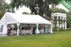 Family Party Tent (TGEO2226)