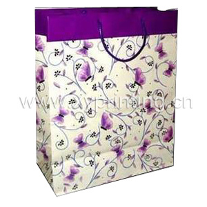 Colorful Gift Bag (XY1236)