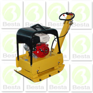 Bilateral Plate Compactor (120kg) pictures & photos