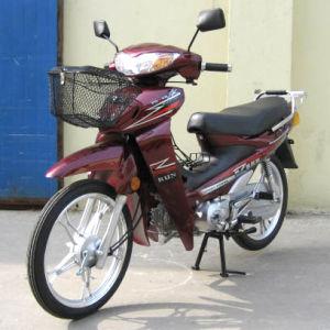 Motorcycle (HN110-2C-2)