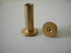 Hollow Tubular Brass Coated Rivets pictures & photos