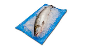 Us FDA Approved Seafood Absorbent Pad for Absorbing The Melting Ice and Juices Released During Fish Transportation