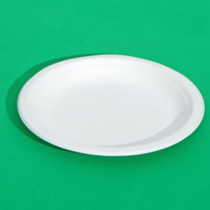 10inch Biodegradable Sugarcane Paper Plate (P014)