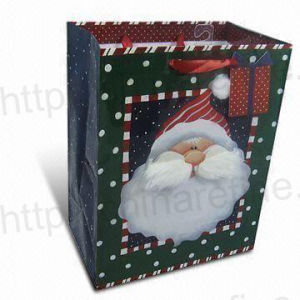 christmas shopping bag -16 pictures & photos