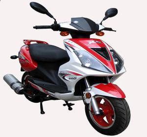 50cc/125cc/150cc Road Legal Scooter (DG-GS819)