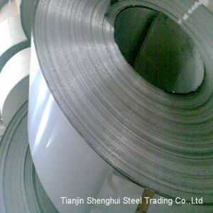 Professional Manufacturer Stainless Steel Strips (AISI301) pictures & photos