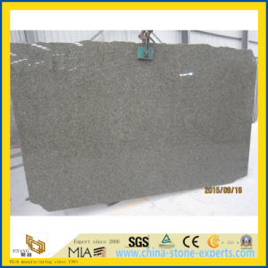 Cactus Green / Chengde Green Granite Slabs for Floor / Countertops pictures & photos