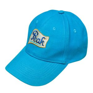 Heavy Brushed Cotton Baseball Cap for Company Business (CH105W) pictures & photos